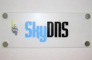 Merlion SkyDNS