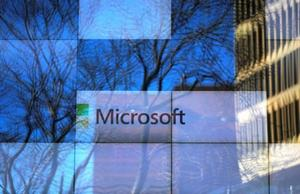 Microsoft 28%