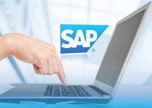 - SAP 27