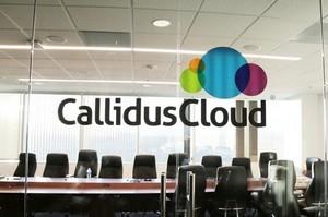 SAP Callidus 2,4