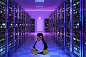 Linux Windows Microsoft